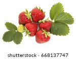 group of strawberries and... | Shutterstock . vector #668137747