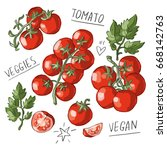 set illustration with tomatoes  ... | Shutterstock .eps vector #668142763