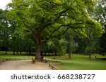 nature    Shutterstock . vector #668238727
