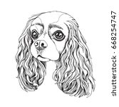 portrait of the cavalier king...