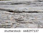 Drift Wood Background