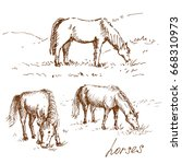 Set Of Hand Drawn Horses....