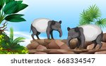 two anteaters on rock... | Shutterstock .eps vector #668334547