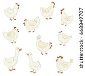 set of cute cartoon farm birds... | Shutterstock .eps vector #668849707