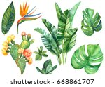 watercolor illustrations... | Shutterstock . vector #668861707