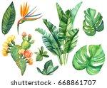 Watercolor Illustrations...