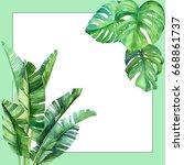 jungle botanical watercolor... | Shutterstock . vector #668861737