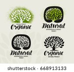 natural  organic product label... | Shutterstock .eps vector #668913133