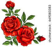 Stock vector vector illustration of red roses isolated on white 669083383