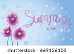 pink flowers and signature... | Shutterstock .eps vector #669126103