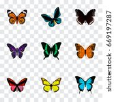 realistic spicebush  beauty fly ... | Shutterstock .eps vector #669197287