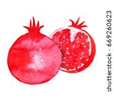 pomegranate. hand painted... | Shutterstock . vector #669260623
