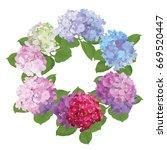 hydrangea flowers with green... | Shutterstock .eps vector #669520447