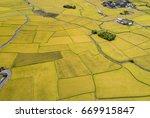 beautiful golden rice fields... | Shutterstock . vector #669915847