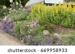 Colourful Flowerbed Of Yellow...