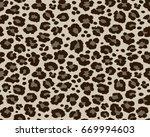 hyena leopard pattern texture... | Shutterstock .eps vector #669994603