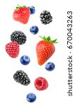 isolated mixed berries in the... | Shutterstock . vector #670043263