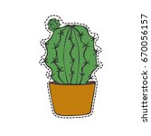 isolated cactus in patch style. | Shutterstock .eps vector #670056157