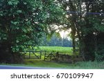 looking through the wood line | Shutterstock . vector #670109947