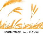realistic collection of wheat ... | Shutterstock .eps vector #670115953