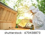 elderly male beekeeper wearing... | Shutterstock . vector #670438873