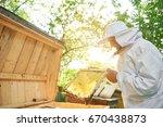 elderly male beekeeper wearing... | Shutterstock . vector #670438873