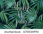 vector palm frond. tropical... | Shutterstock .eps vector #670534993