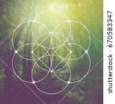 flower of life   the... | Shutterstock .eps vector #670583347