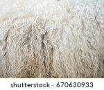 Closeup Of Sheepskin On Side O...