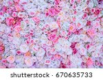 Stock photo background of pink orange and peach roses beautiful flowers background for wedding scene 670635733