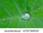 wow amazing morning dew drops... | Shutterstock . vector #670730053