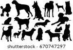 Stock vector dog breeds silhouettes of dogs vector illustration 670747297