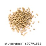 white pepper seeds or corns... | Shutterstock . vector #670791583