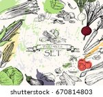 vector illustration. sketch... | Shutterstock .eps vector #670814803