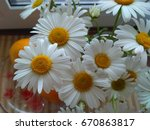 large chamomile. a bouquet of... | Shutterstock . vector #670863817