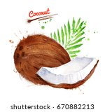 watercolor illustration of... | Shutterstock . vector #670882213