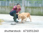 dedicated girl training dog in... | Shutterstock . vector #671051263