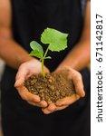 dirty farmer hands holding thai ... | Shutterstock . vector #671142817