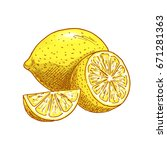 lemon fruit sketch icons.... | Shutterstock .eps vector #671281363