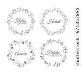 herbs illustration. floral... | Shutterstock . vector #671357893