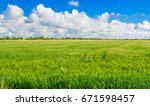 wheat field against blue sky... | Shutterstock . vector #671598457