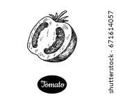fresh tomato slice. hand drawn... | Shutterstock .eps vector #671614057