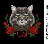 brown gray striped cat eyes... | Shutterstock .eps vector #671680507