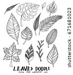 set of doodle leaves sketch... | Shutterstock .eps vector #671681023