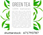 fresh green tea leaves and twig ... | Shutterstock .eps vector #671793787