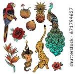 tropical exotic sea vector set. ... | Shutterstock .eps vector #671794627
