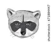 illustration of a raccoon head... | Shutterstock . vector #671884447