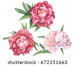 Red And Pink Peonies Set Of...