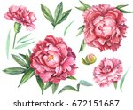 Red Carnations And Peonies Set...