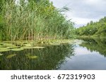 reflection in the water   water ... | Shutterstock . vector #672319903